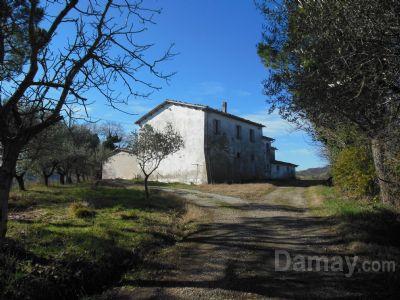 San Carlo di Cesena Terreno agricolo